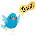 el significado de tweet en ingles