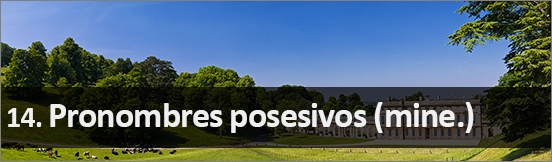 14_Pronombres posesivos en inglés